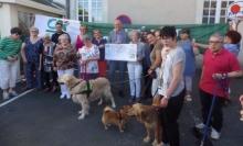 Au Foyer, des partenaires soutiennent les ateliers de médiation animale